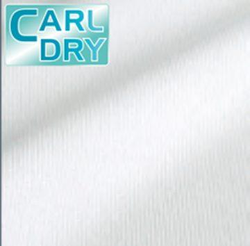 kiji_carldry