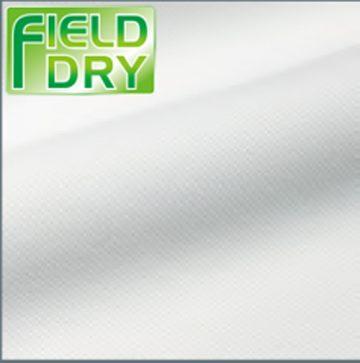 kiji_fielddry
