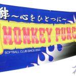 teamflag_monkeypunch1